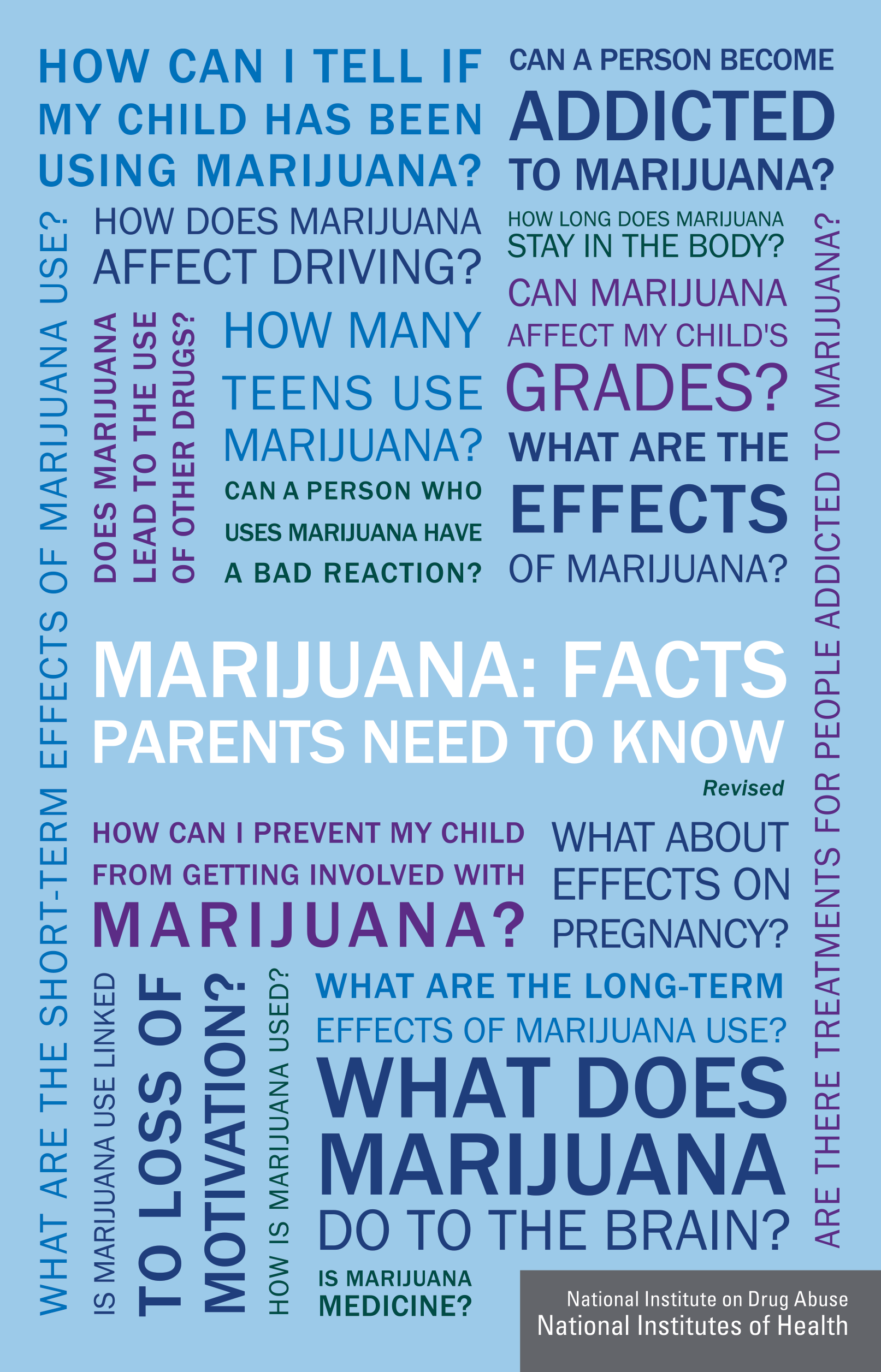 Front page of the National Institute on Drug Abuse Parents Facts Brochure